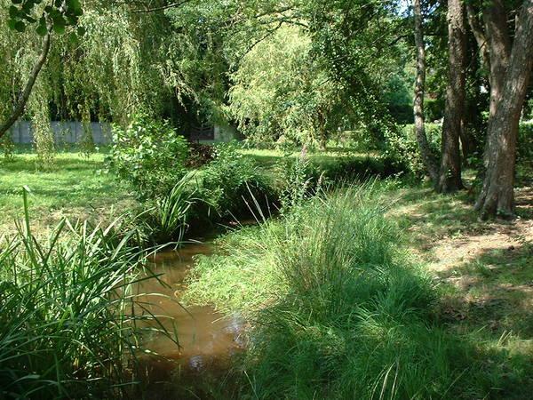 Le ruisseau du Bétey