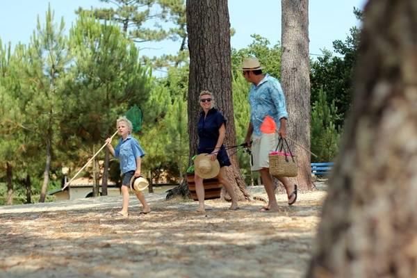Plage du Bétey en famille sous les pins